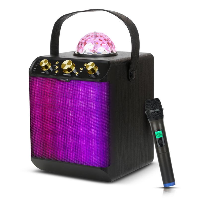넥스트 블루투스 휴대용 노래방 마이크 + 앰프 30W, 앰프(NEXT-BT40AMP), 마이크(NEXT-31MIC)