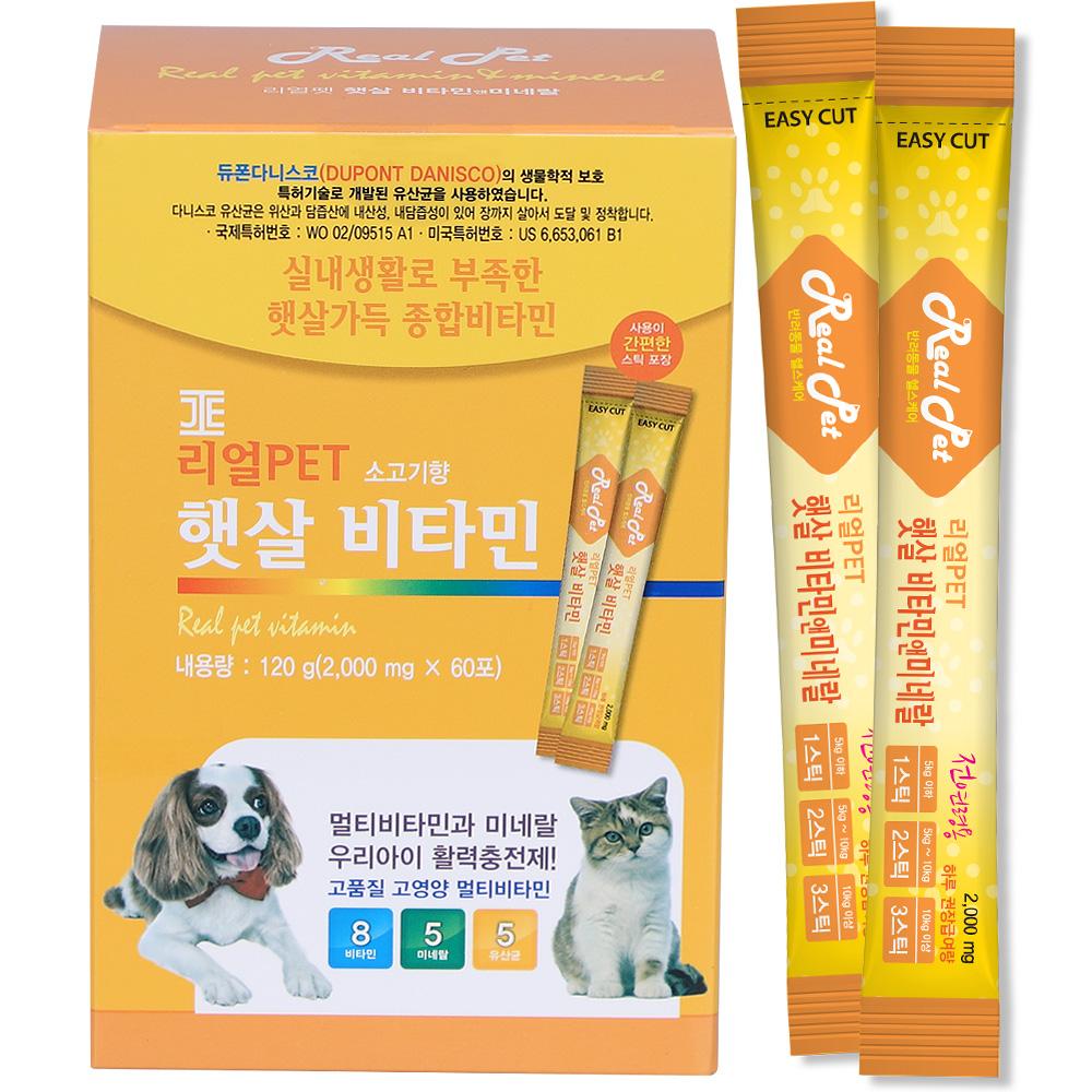 리얼펫 햇살비타민 강아지 영양제 60포, 면역건강, 1개
