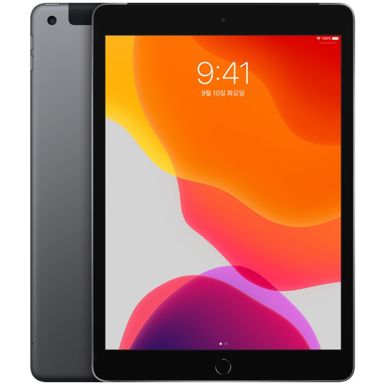 Apple 2019년 iPad 10.2 7세대, Wi-Fi+Cellular, 128GB, Space Gray, LGU+ 유심 포함