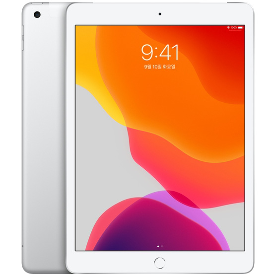 Apple 2019년 iPad 10.2 7세대, Wi-Fi+Cellular, 128GB, Silver
