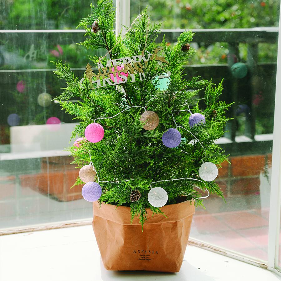 아스파시아 아비에스 전나무 크리스마스 스탠딩트리 소 + 코튼볼전구 4m, 혼합 색상