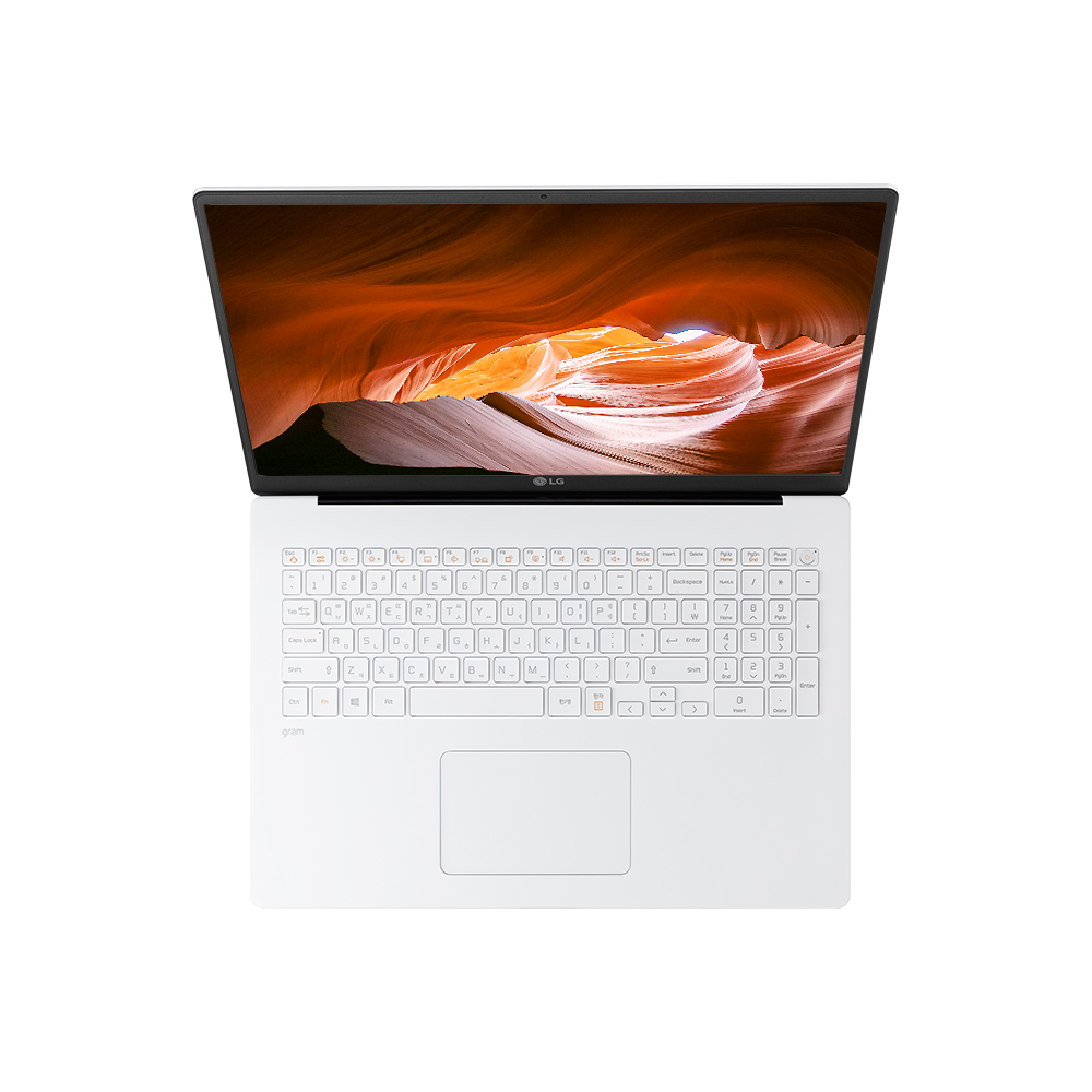 LG전자 2020 그램 17 노트북 17ZD90N-VX50K (I5-1035G7 43.1cm), NVMe 256GB, 8GB, Free DOS