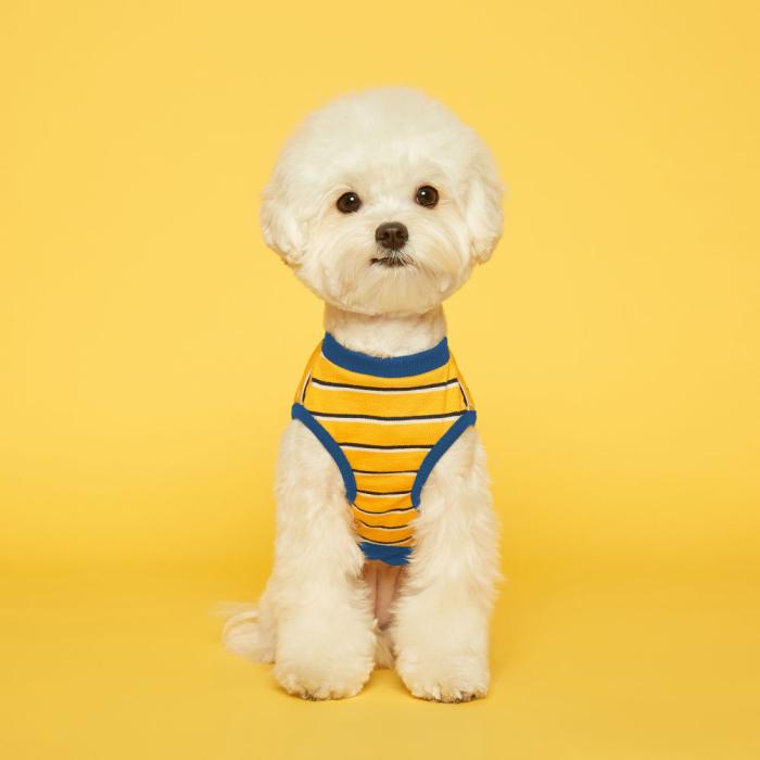 플로트 스탠다드민소매티셔츠 강아지옷, 옐로우블루