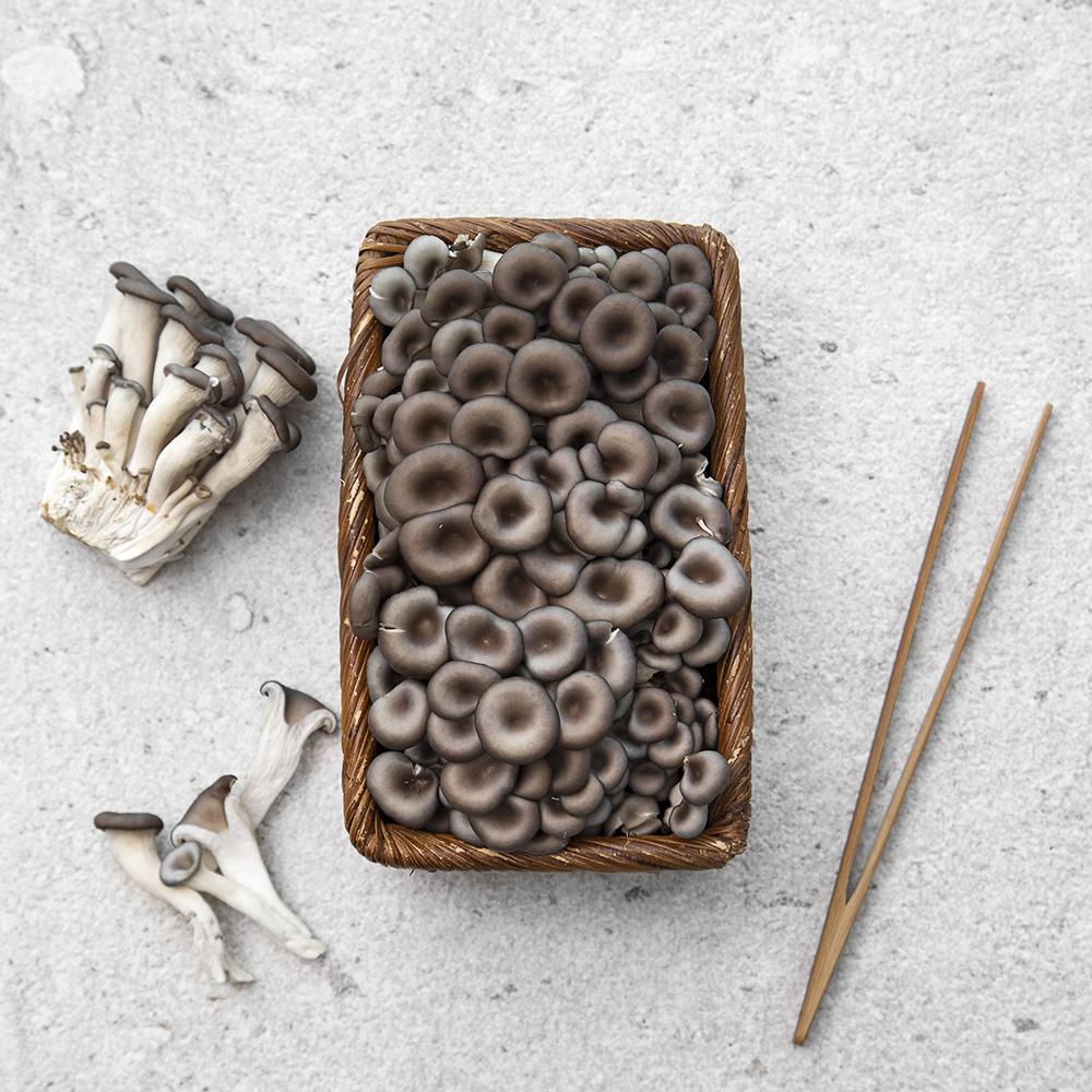 친환경 인증 대용량 애느타리버섯, 500g, 1팩