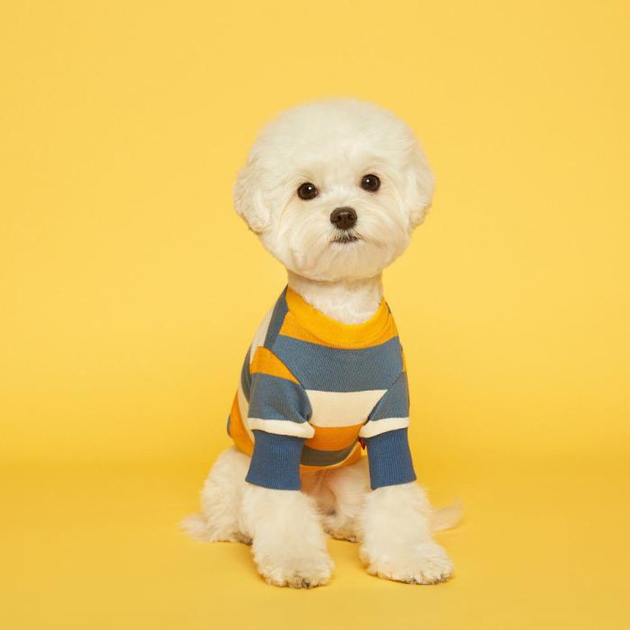 플로트 스탠다드 강아지 맨투맨 티셔츠, 스트라이프 옐로우 + 스카이블루