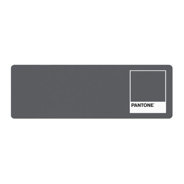 PANTONE 마우스 장패드 300 x 900 mm, GRAY, 1개