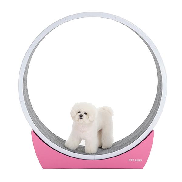 펫링 고양이 휠 하우스형 스크레쳐 C1, 핑크, 1개