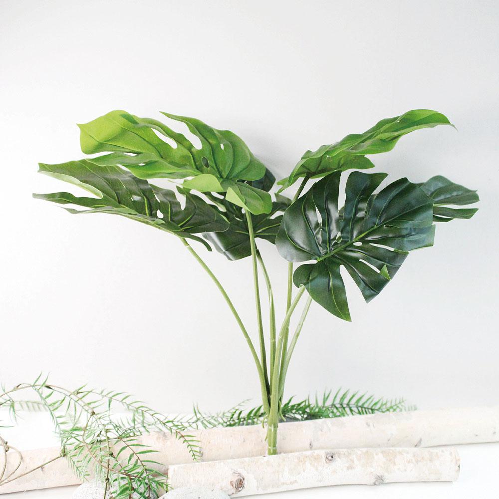 도시정원 몬스테라 나뭇잎 원예용품, 혼합색상, 1개