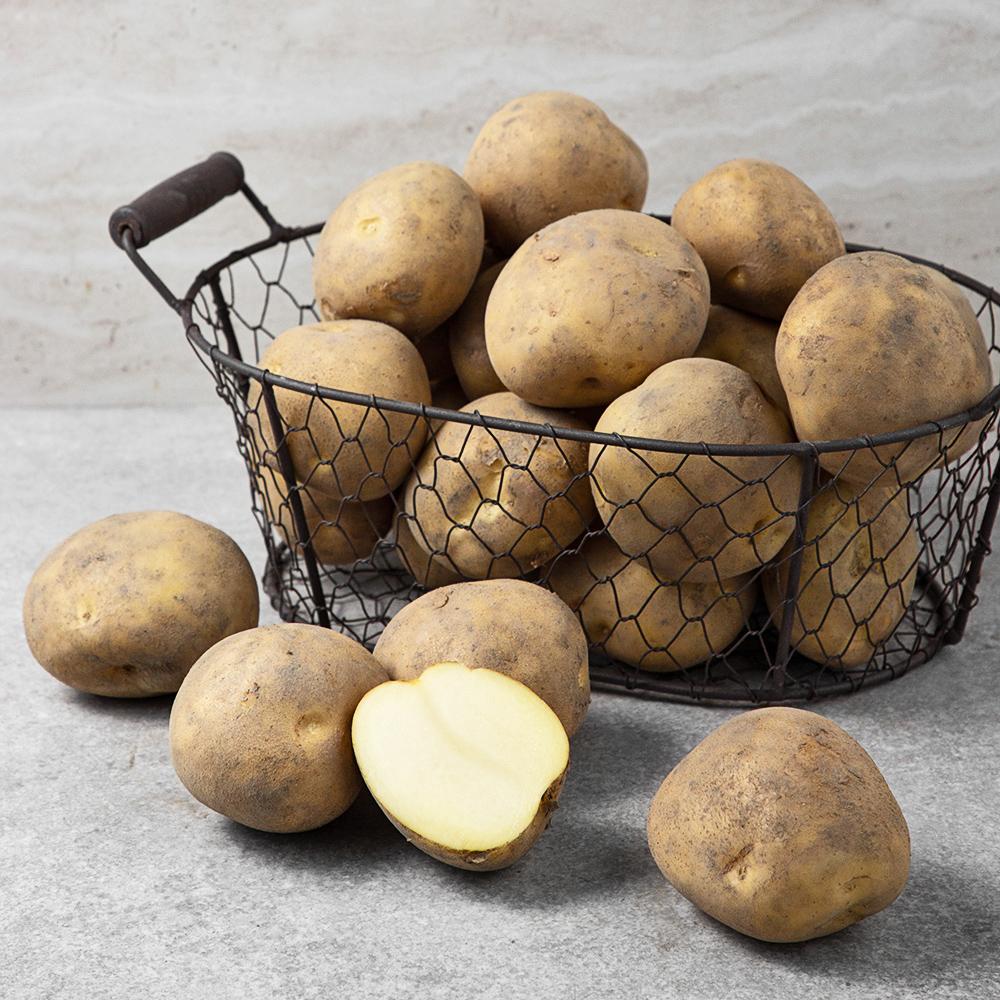 국내산 감자, 10kg, 1박스