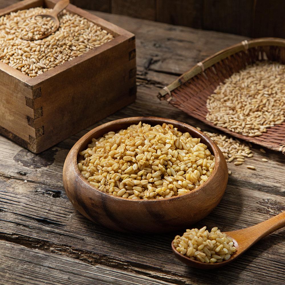 대구농산 갓 도정한 불릴필요없는 귀리쌀, 8kg, 1봉