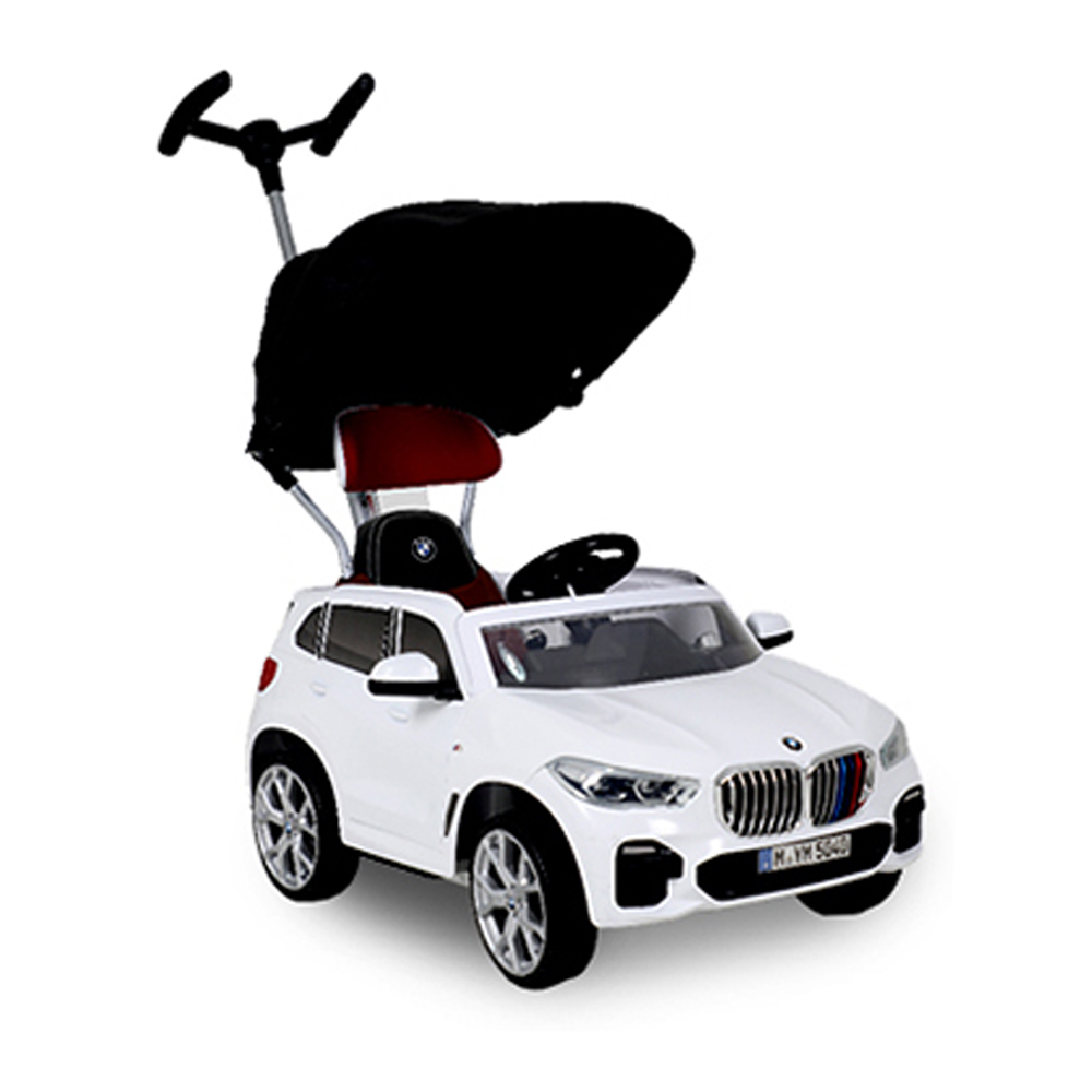 파파야나인 BMW X5 푸쉬카 + 차양막, 화이트