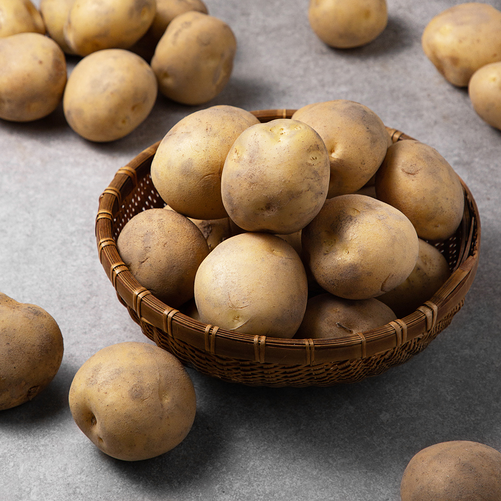 밀양 감자, 5kg, 1박스