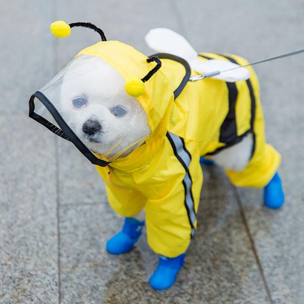 파스텔펫 반려동물 라인 캐릭터 우비, 꿀벌