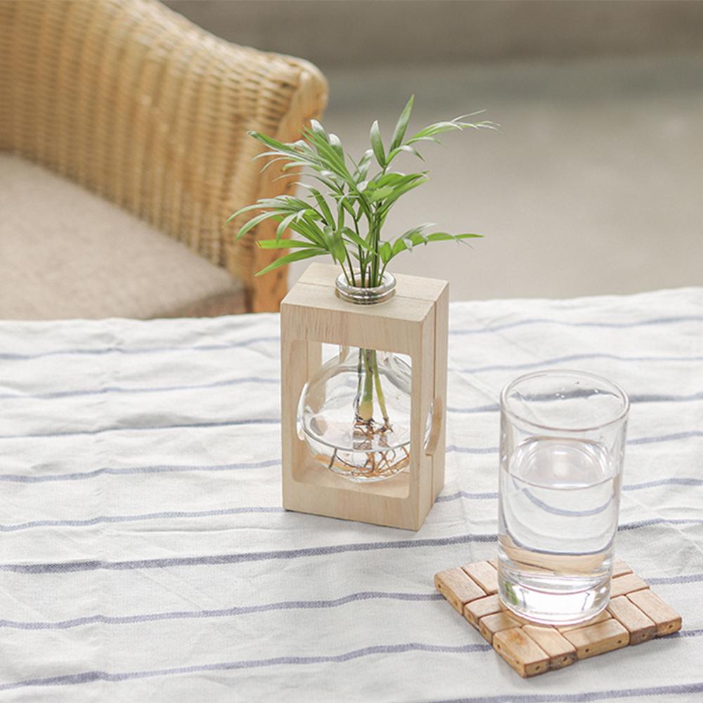 메이크정글 공기정화식물 기프트 세트 테이블야자, 혼합색상, 1세트