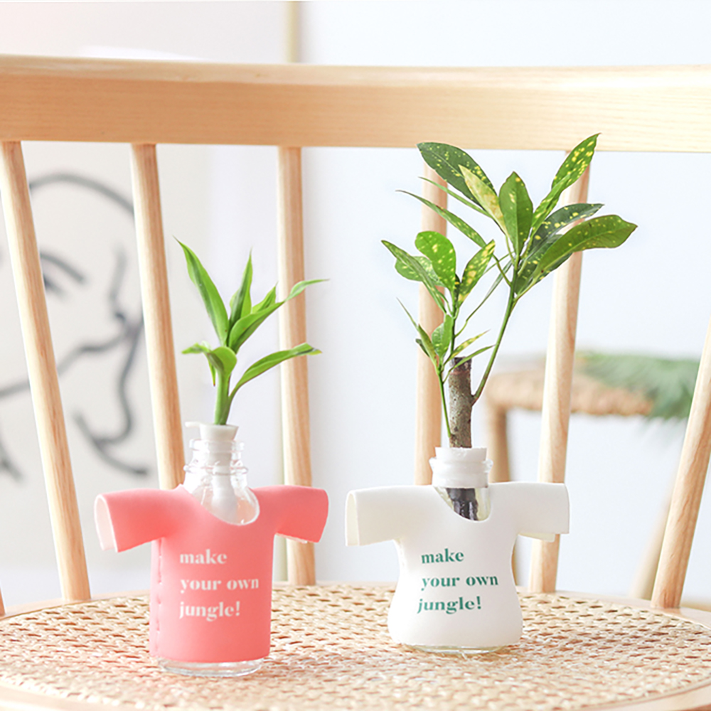 메이크정글 공기정화식물 마니또팟 2종세트, 크로톤, 산데리아나, 1세트