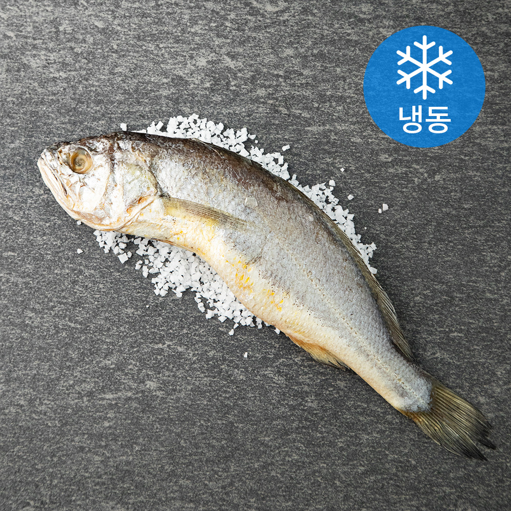 영광 법성포 쫀득한 굴비 (냉동), 160g, 1개