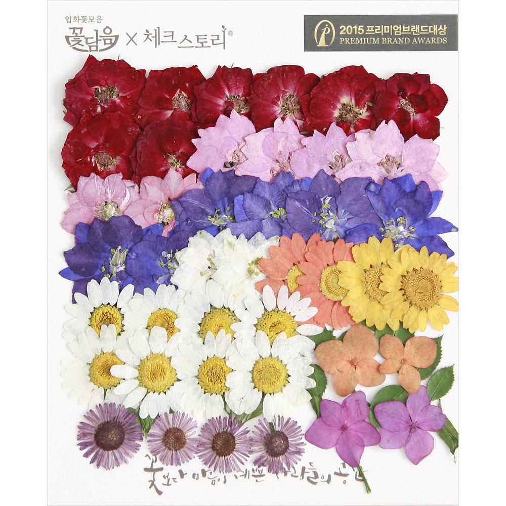 체크스토리 압화꽃 공예 C타입, 03 장미정원