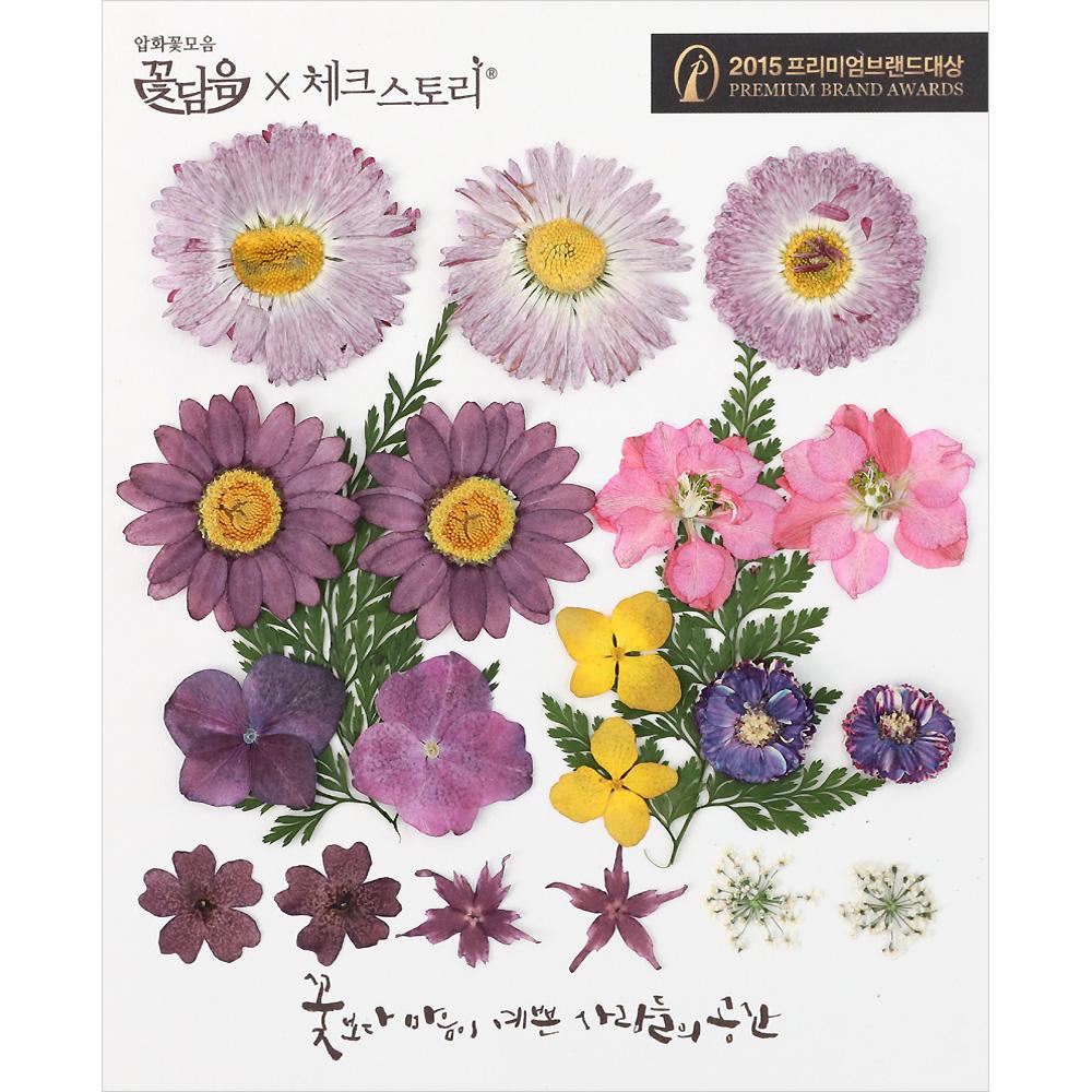 체크스토리 압화꽃 공예 B타입, 06 우아한퍼플