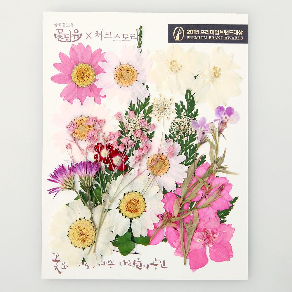 체크스토리 압화꽃 공예 A타입, 09 미니핑크