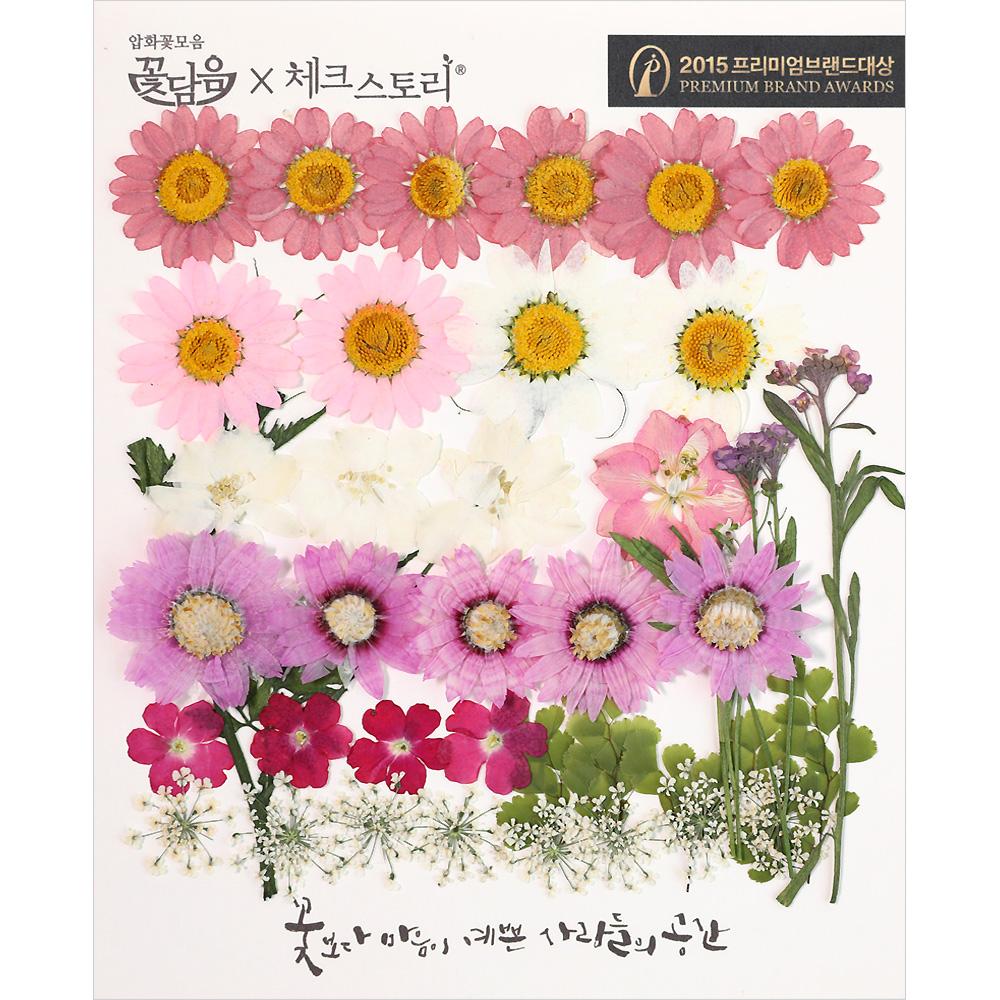 체크스토리 압화꽃 공예 B타입, 04 로맨틱가든