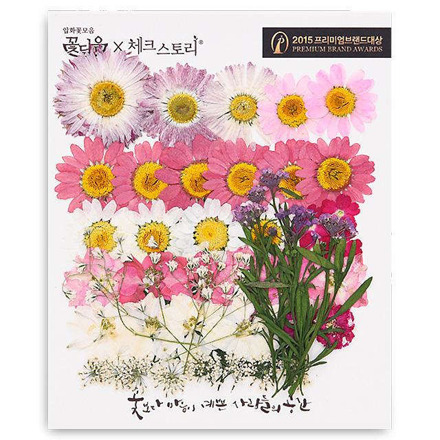 체크스토리 압화꽃 공예 C타입, 04 신부