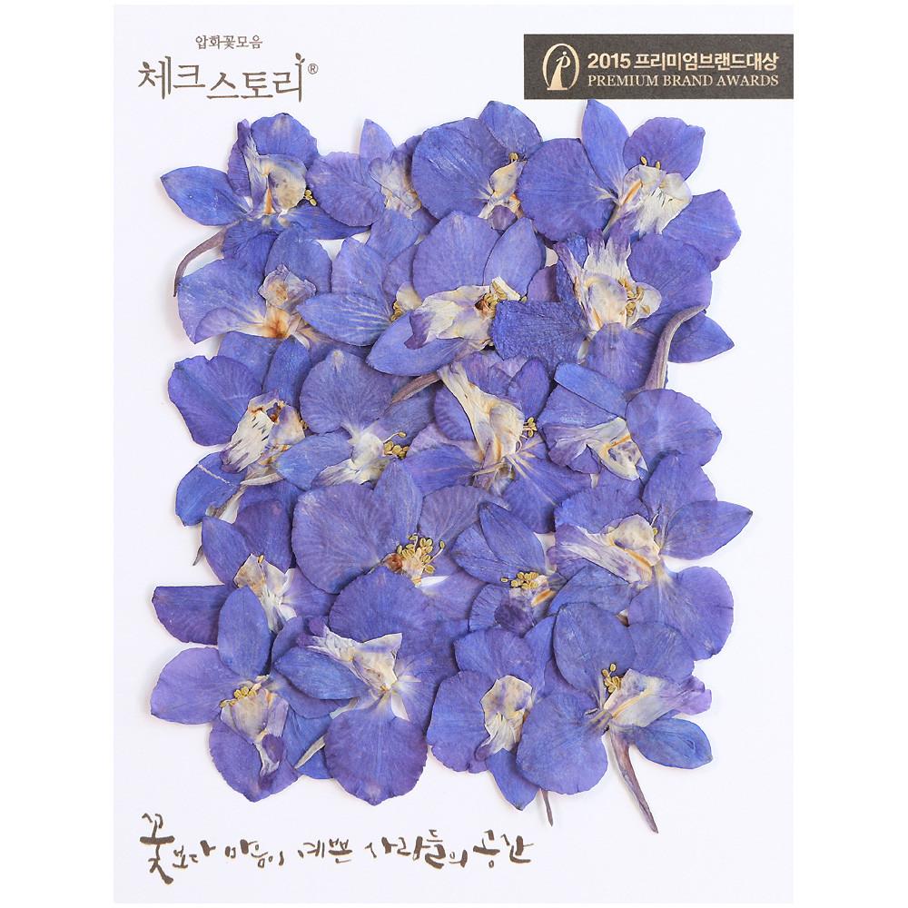 체크스토리 압화꽃송이 델피늄, 퍼플