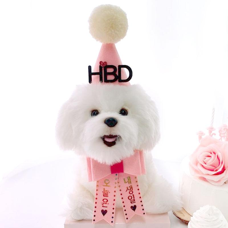 핑크캔디 강아지 생일파티세트, 핑크