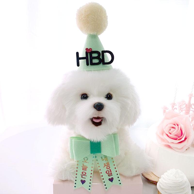 핑크캔디 강아지 생일파티세트, 민트