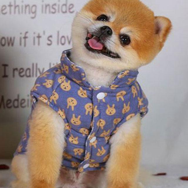 양면 리버시블 토끼 패딩조끼 강아지옷, 블루