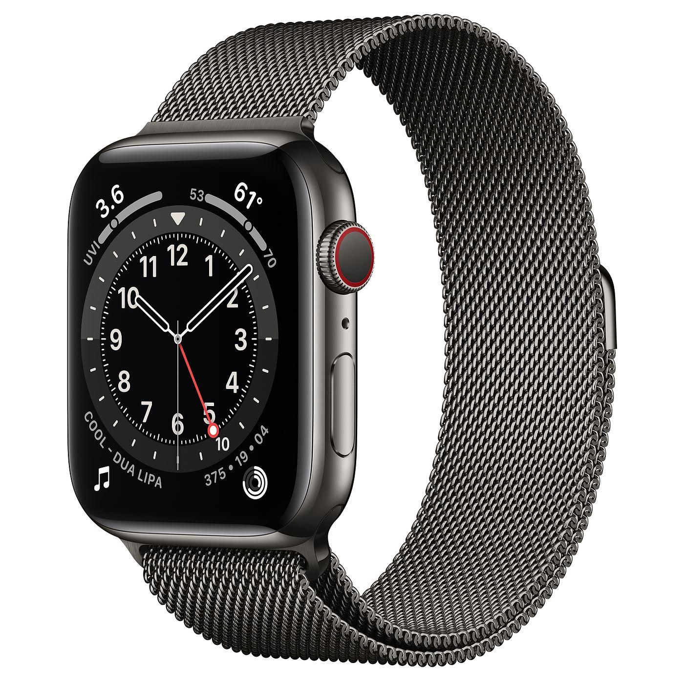 Apple 2020년 애플워치 6, GPS+Cellular, 그래파이트 스테인리스 스틸 케이스, 그래파이트 밀레니즈 루프