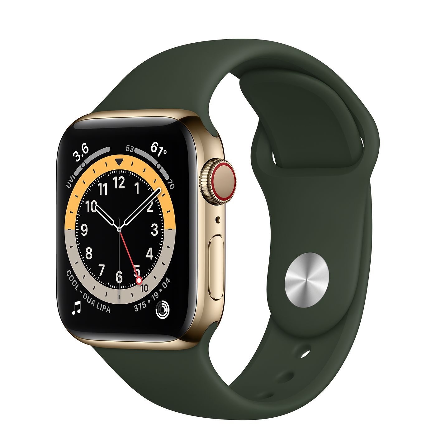 Apple 애플워치 6, GPS+Cellular, 골드 스테인리스 스틸 케이스, 사이프러스 그린 스포츠 밴드