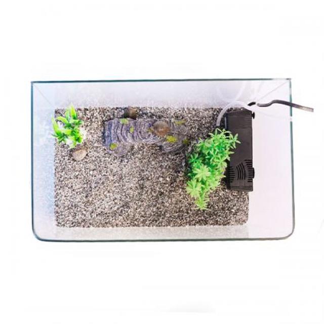 고운물 까꿍 거북이 수조 세트 소 35cm, 1세트