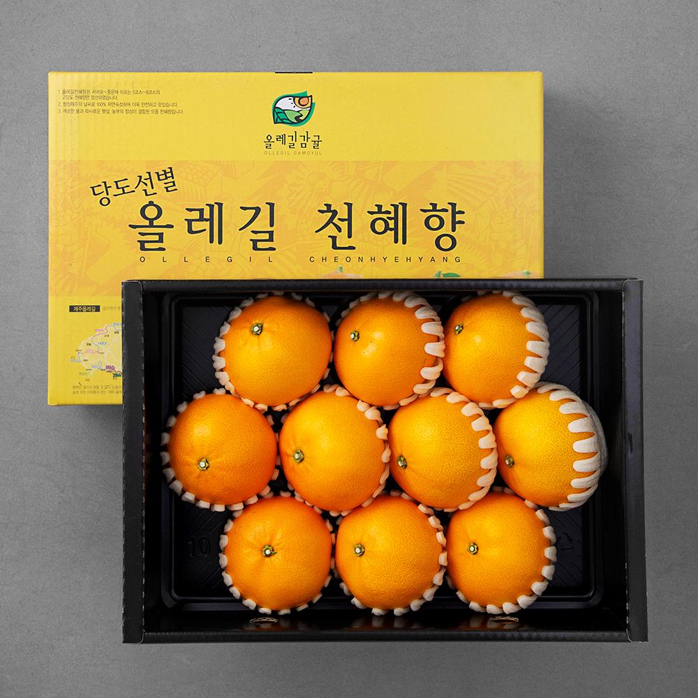 올레길 GAP 인증 당도선별 천혜향, 3kg(9~12입), 1박스