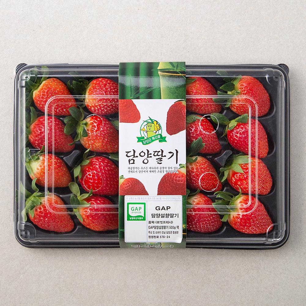 GAP 인증 담양 설향딸기, 500g, 1팩