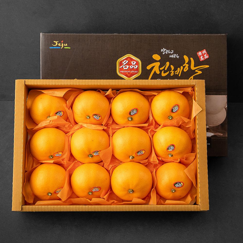 한성영농 당도선별 천혜향 선물세트, 3kg(8~12과), 1세트