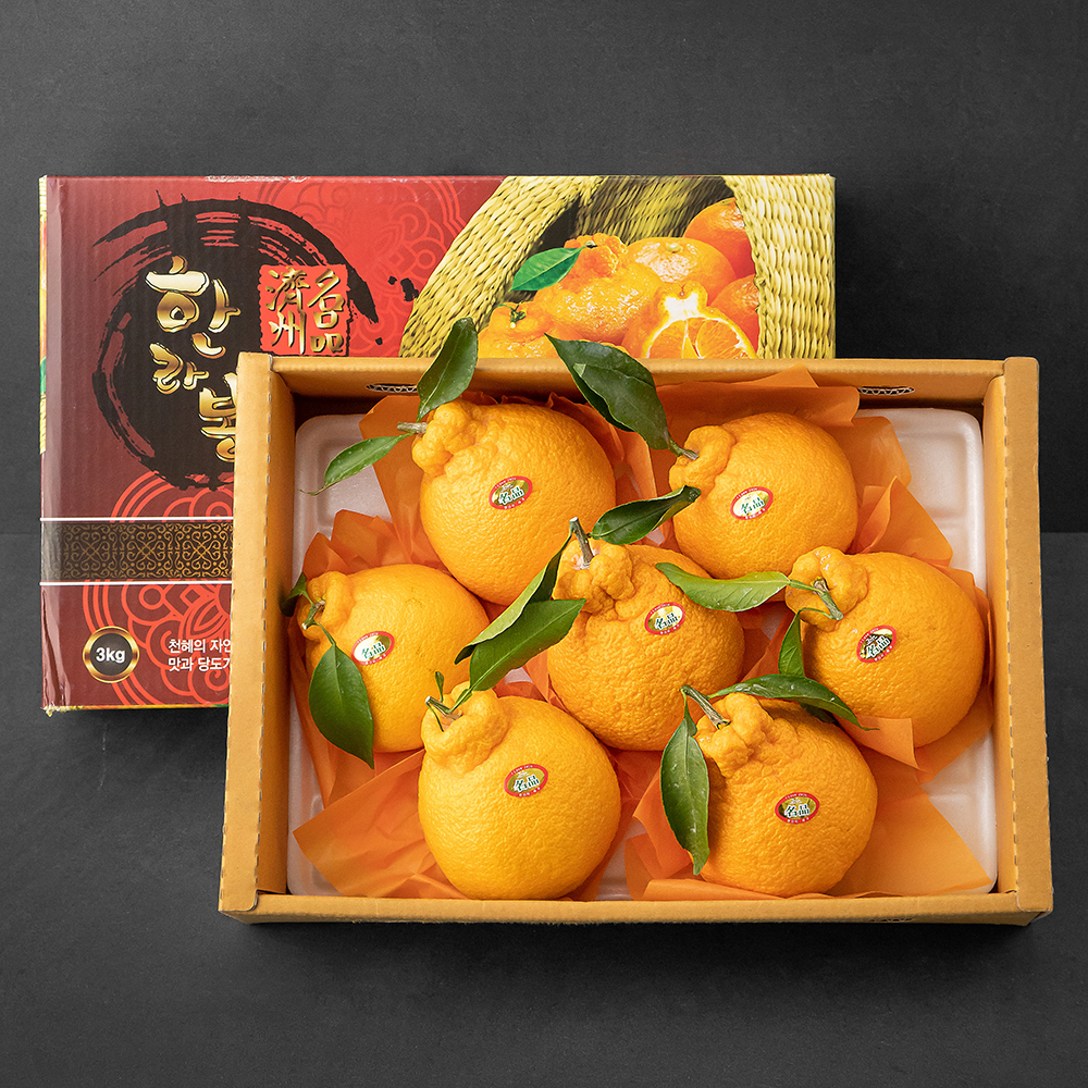 한성영농 고당도 한라봉 선물세트, 3kg(6~10과), 1세트