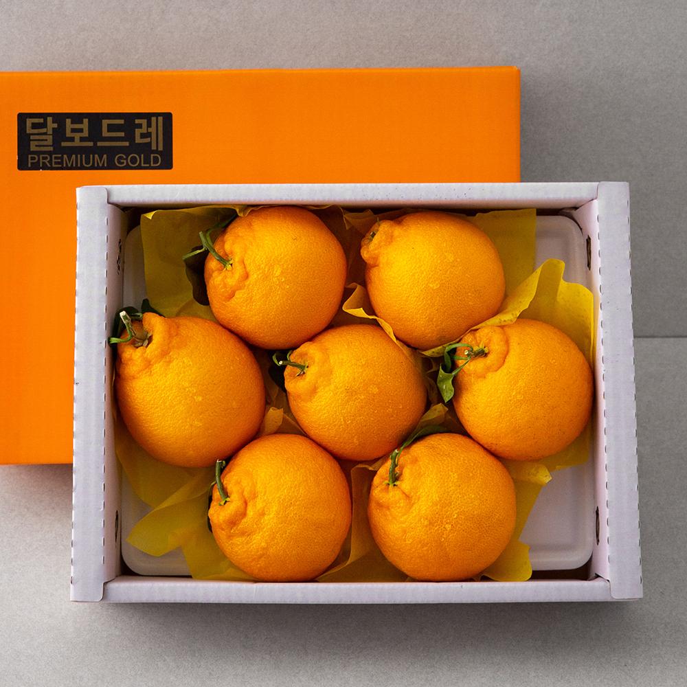 달보드레 당도선별 한라봉, 2kg(6~8입), 1박스