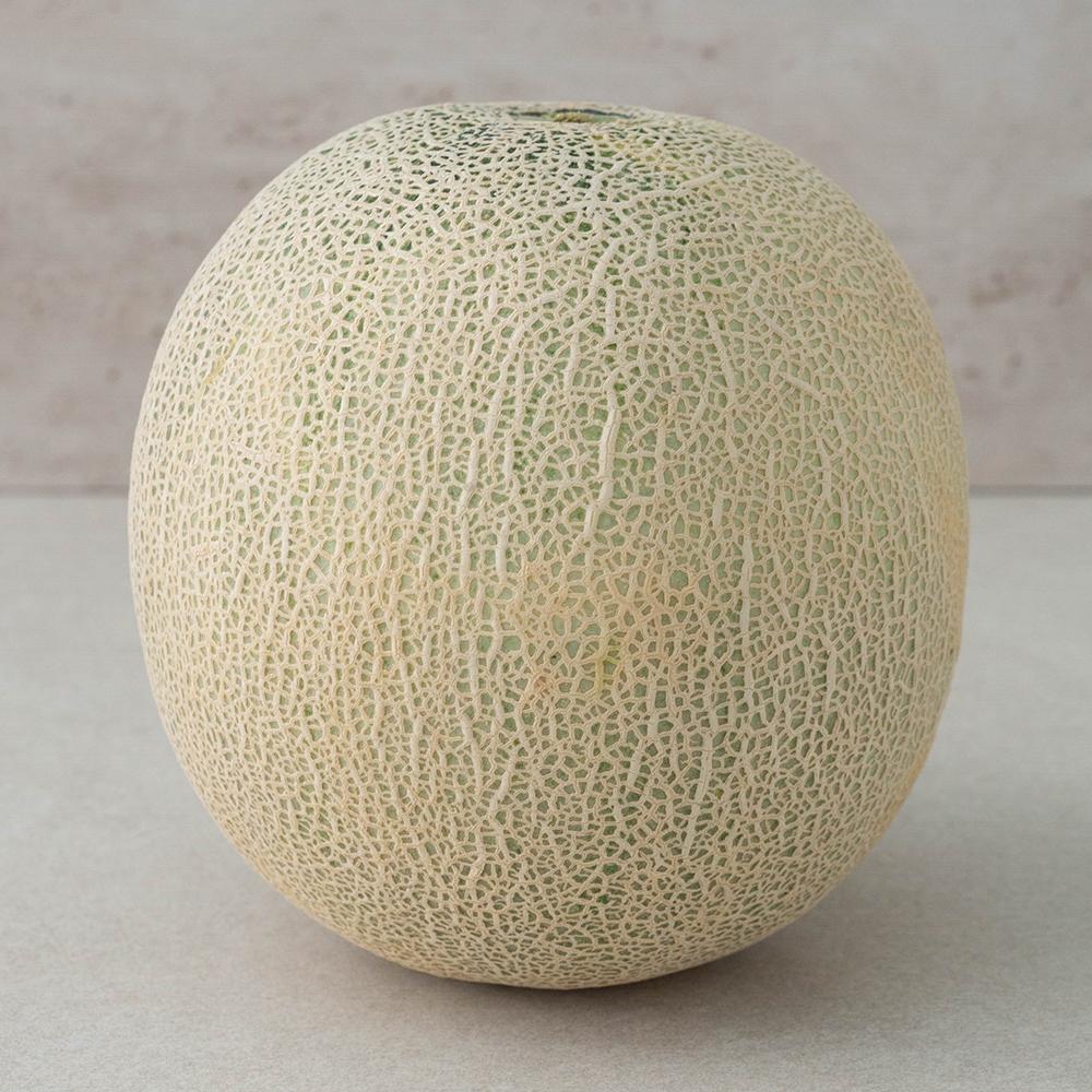 ONLYFARM 당도선별 머스크 메론, 1.8kg, 1개