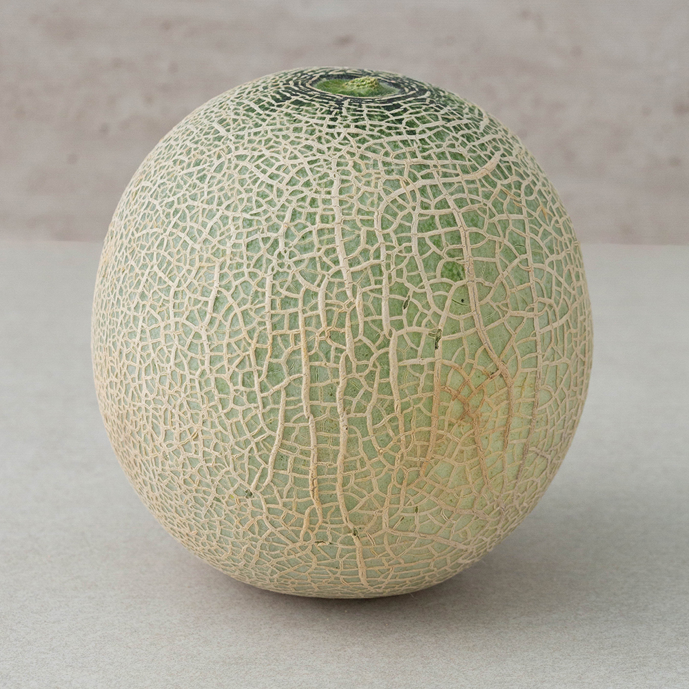 ONLYFARM 당도선별 머스크메론, 1.2kg, 1개
