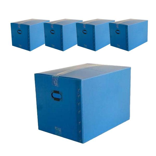 단프라 이사박스 4호, 블루, 5개 (POP 5508993950)