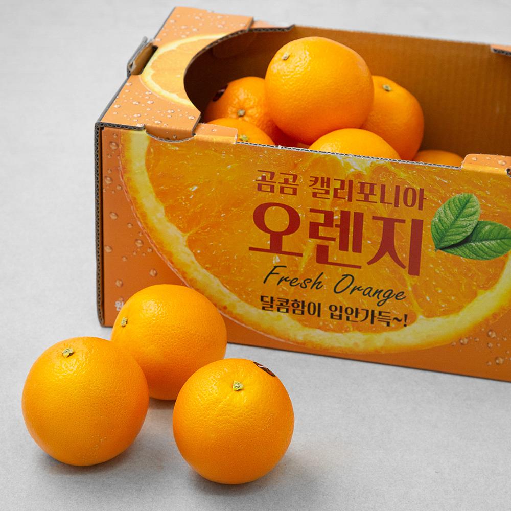 곰곰 캘리포니아 오렌지, 5kg, 1개