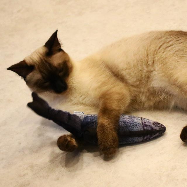리스펫 움직이는 생선 파닥파닥 고양이 장난감, 연어, 1개