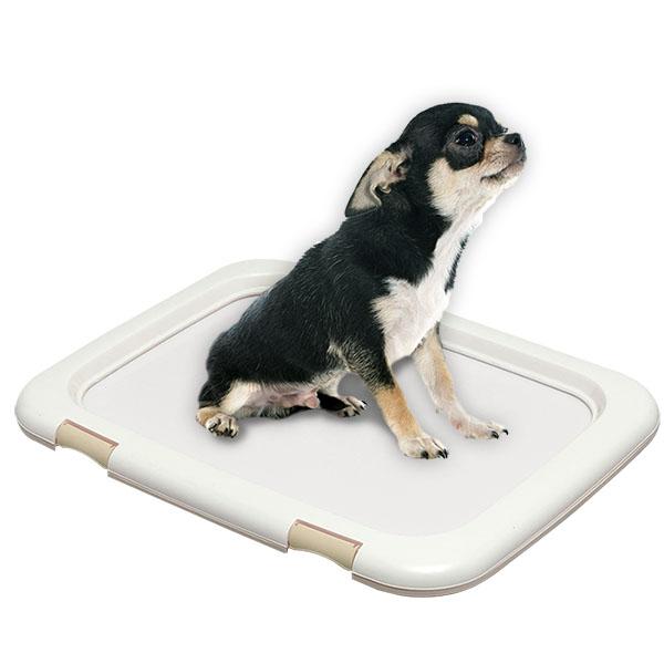아이리스 기본형 간편 강아지 배변판 대형 FMT-635, 화이트, 1개