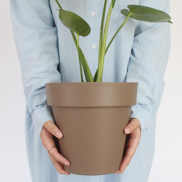 모리앤 베이직 원형 저면관수 화분, 브라운