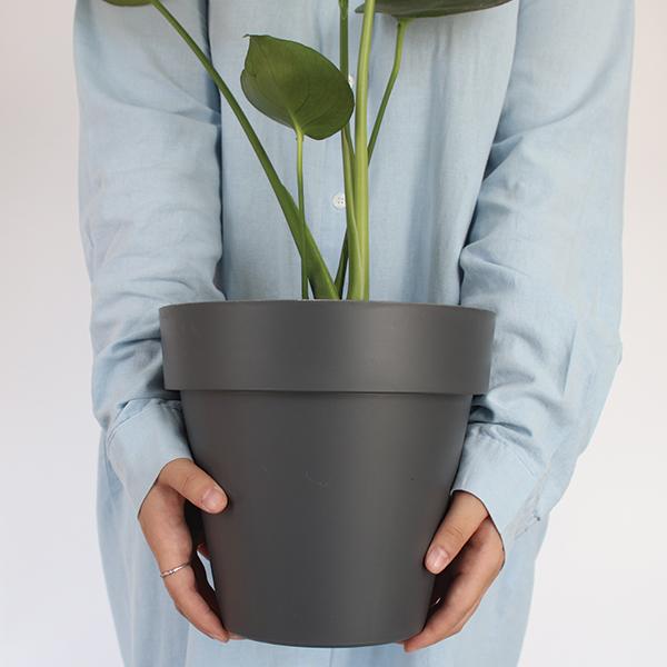 모리앤 베이직 원형 저면관수 화분, 다크그레이