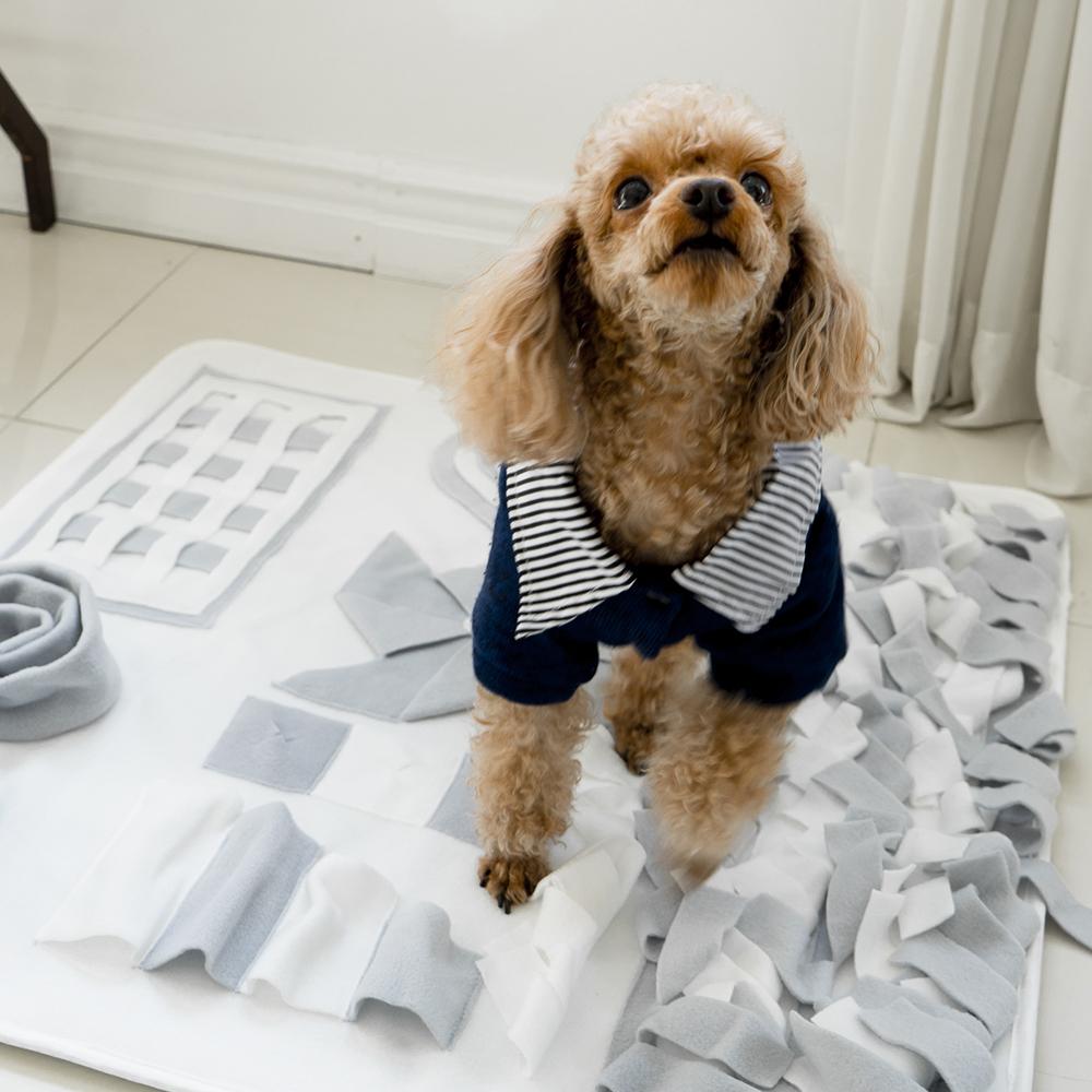 아띠지기 강아지 노즈워크 스너플 매트 중대형 70 x 70 cm, Gray, 1개