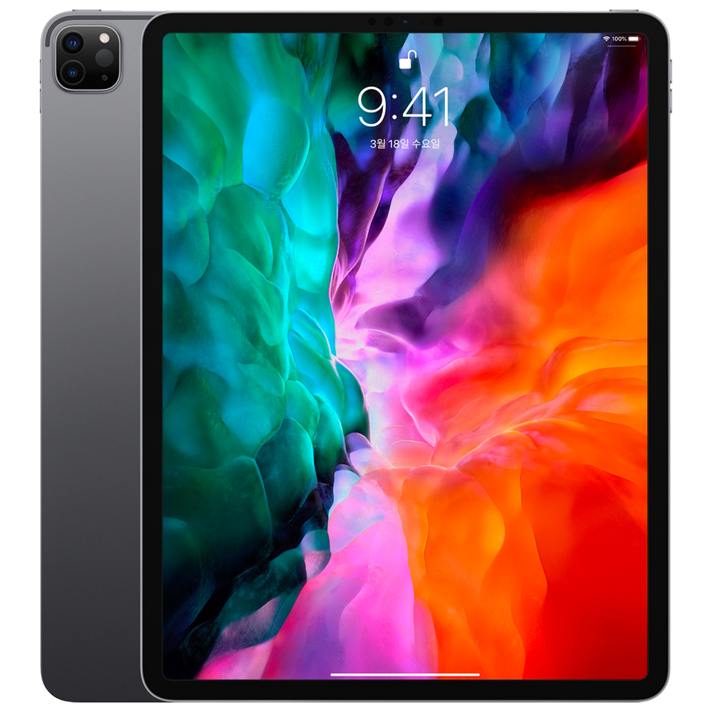 Apple iPad Pro 12.9 4세대, Wi-Fi, 1TB, 스페이스 그레이