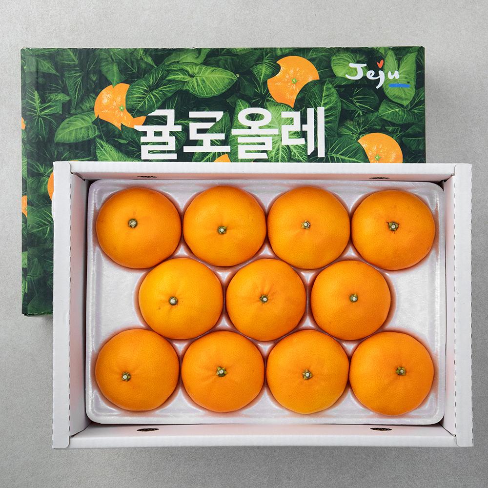 올탑 제주 천혜향, 3kg, 1개