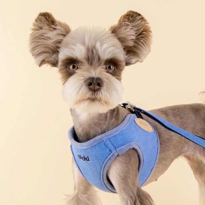퍼피아 올치 매직 강아지 하네스, 블루