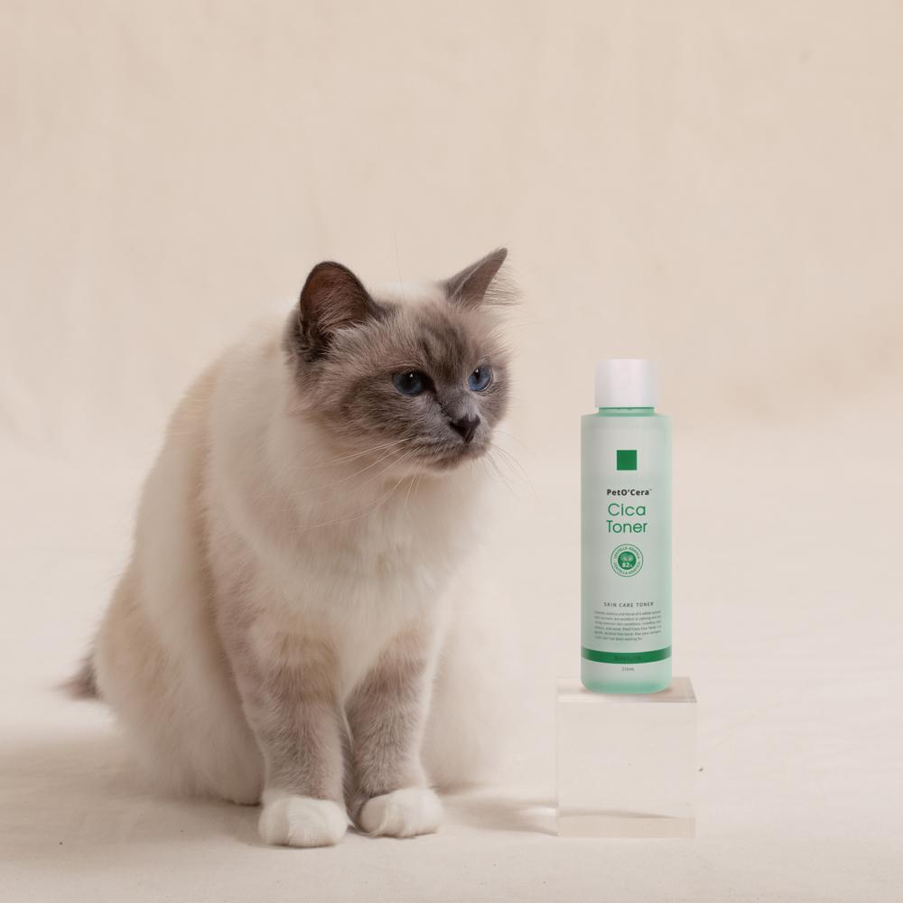 브리지테일 페토세라 고양이 시카토너, 210ml, 1개